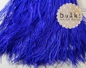 ROYAL BLUE - BULK - Vogue Ostrich Thrill - Feather Trim - Ostrich Trim - Wholesale Feathers