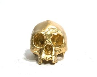 BLING! Homo floresiensis skull