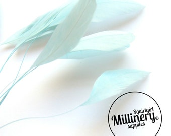 Stripped Coque Feather Hat Mount Aqua Blue (10 Feathers) for Millinery & Fascinators