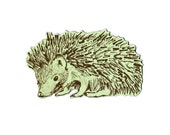 Hedgehog Sideways Magnet