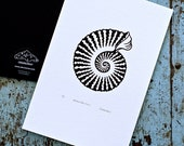 Ammonite / Ammonoidea 'specimen' (noir) - Limited edition one-colour screenprint