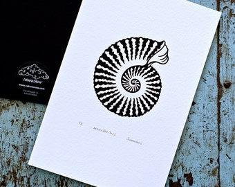 Ammonite / Ammonoidea 'specimen' (noir) - Limited edition one-colour screenprint