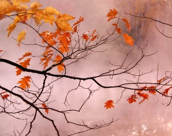 Autumn Landscape Photograph tree branch orange leaves mist on the water foggy morning red russet