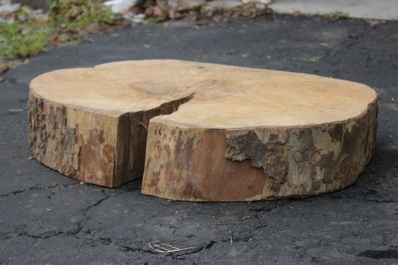 Large tree trunk slice wood block for table top vintage or for Wood trunk slices