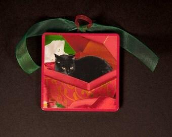 Black Cat Christmas Ornaments, Wood Ornament, Black Cat in A Box, Stocking Stuffer, Cat Artwork by Deborah Julian