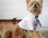 Dog Tie (shirt not included)