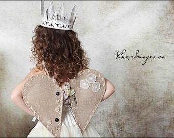 Beautiful woodland Princess Wings