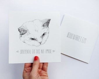 lolcat greetings card - Judgemental cat does not approve