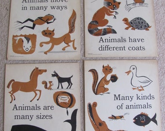 "Vintage Illustrated Large Flash Card Science Chart Poster -- 11"" x 14"" Your Choice Animals"