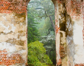 South Carolina Historic Church Photo Sheldon Ruins-- Another View From the Inside