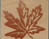 Maple Leaf  Stamp  --  NEW  -- Wood Mounted Rubber Stamp -- Rubber Stampede Brand --  (#485)