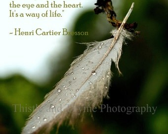 Feather photography with quote - 5x7 Photographic art print