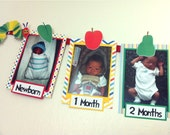 HUNGRY CATERPILLAR Inspired Photo Timeline Birthday Banner