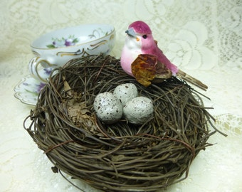4 inch Bird Nest with Bird and Eggs