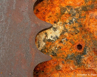 Orange, Industrial, Gear, Black, Abstract, 8x10, brown, rust, photograph