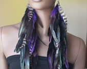 Very Long Feather Earrings Purple Grizzly and Black