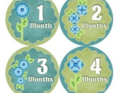 SALE Monthly Baby Stickers Month Bodysuit Sticker Baby Girl Month Milestone Sticker Baby Shower Gift Baby  Props Flowers Blue Green (095G)