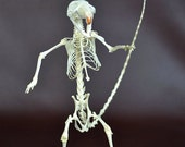 real rat skeleton with  skateboard,free shipping to everywhere,Birthday Gift,Christmas Gift