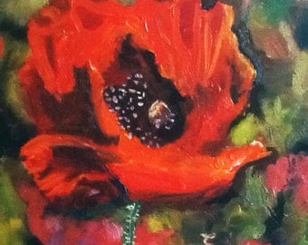 Red Poppy - Oil Painting Fine Art - small