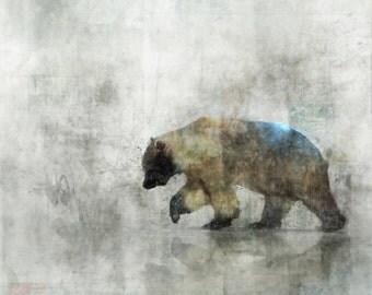 Bearspring 03: Giclee Fine Art Print/ 13X19