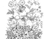 Fairies and Birds Pen and Ink Woodland Illustration Print