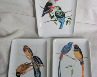 Lovely set of 6 exotic bird nut, mint trays
