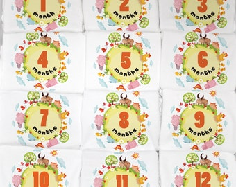 Unique Farm Animal Theme, Baby Girl Month to Month Onesies, 12 Month Set