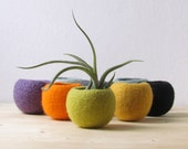 Felted wool bowl / Felt succulent planter / Wedding favor / Cactus terrarium / felt vase / gift for coworker / Make your own collection!