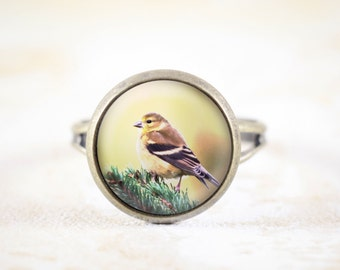 American Goldfinch Jewelry Ring - Bronze Songbird Ring Adjustable