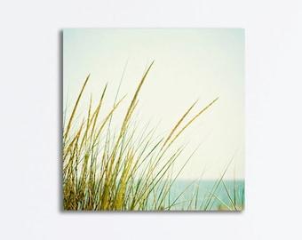 Beach Grass Canvas - coastal photography canvas wrap light green blue cream seashore neutral wall art photograph seaside canvas print