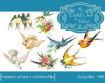 Digital clipart, vintage bird images--instant digital download--bird clip art, dove, lovebird, swallow, roses, printables--8 PNG files   198