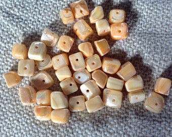 Peach Shell Beads