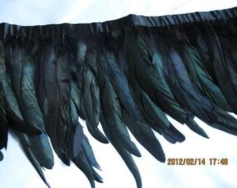10Yards /lot Black Coque Feather Trim 14-18cm width