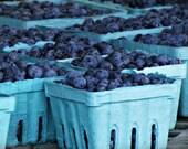 Blueberries Kitchen Art/Home Decor - True Blue - Original Fine Art Photograph - 8x10 Print