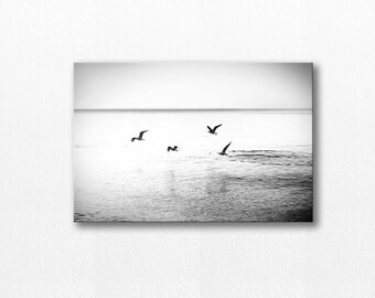 bird photography canvas gallery wrap 12x18 20x30 fine art photography canvas art birds flying canvas birds beach photography black white art