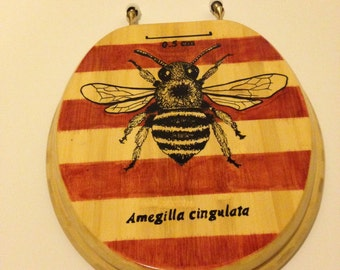 Toilet Seat Handmade Illustrated Stained Tasmanian Blue Banded Bee Design Art Toilet Seats Home Bathroom Décor