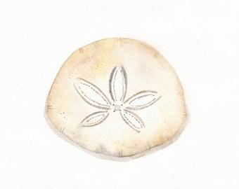 Sand dollar/ watercolor print/sand/beige/tan/sea/ocean life/beach cottage decor/Archival Print