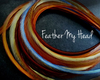 "16 DIY Kit Whiting Feather Hair Extensions  Extra Long 11""-14"" (28-36cm) Indian Summer  - Blue Brown Orange - Beads / Instructions"