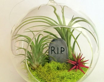 Air Plant Halloween Theme Hanging Orb with Ceramic Grave Head Stone