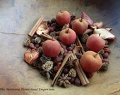 APPLE ORCHARD potpourri fixins handmade Farmhouse kitchen apples cinnamon dried apples harvest fall scents wax melting tarts Montana made