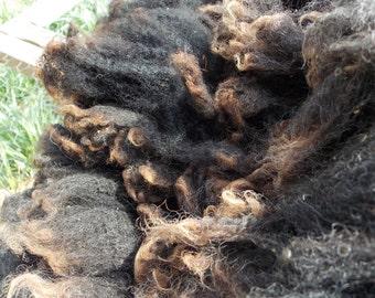 Unwashed Shetland Sheep Wool  Black -Ingrid- 2 lb