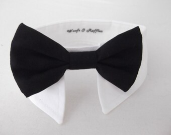 Dog Tuxedo White Shirt Collar and Dog Black Bow SET - bridal formal wear -