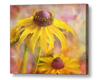 Black Eyed Susan Flowers Yellow Pink Green Boho Woodland Colorful  Bright Garden  Fine Art Photography on Giclee Gallery Wrap Canvas