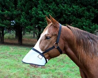 Horse sunburn etsy