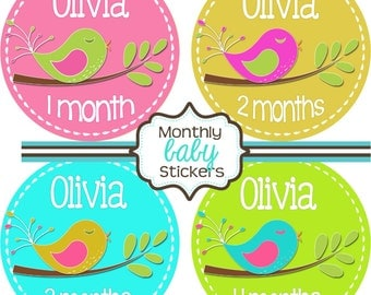 Monthly Baby Stickers - Baby Shower Gift and Photo Prop - birdies - 270