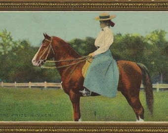 The Prize Winner - Antique 1910s Equestrian and Show Horse Self-Framing Postcard