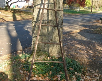 Rare FRENCH ANTIQUE apple picking/ORCHARD ladder Local pick up only