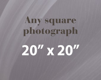 Any 20x20 Photographic Print, Square