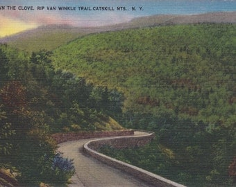 Vintage Antique Postcard - NEW YORK - Down the Clove, Rip Van Winkle Trail - Catskills - USED