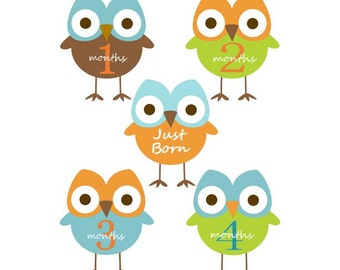 Baby  Monthly Iron On Heat Transfers - Blue OWLS - Plus JUST BORN  115